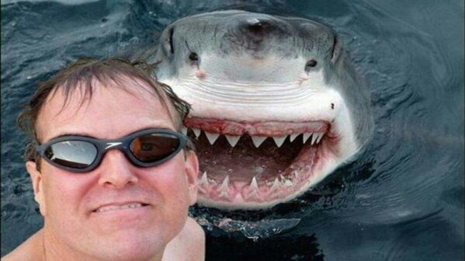 selfieshark