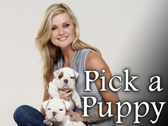 pick-a-puppy-2.jpg